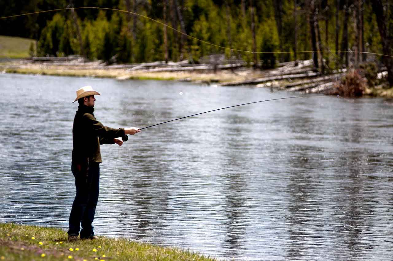 Try Fly Fishing In Colorado Colorado Wilderness Rides