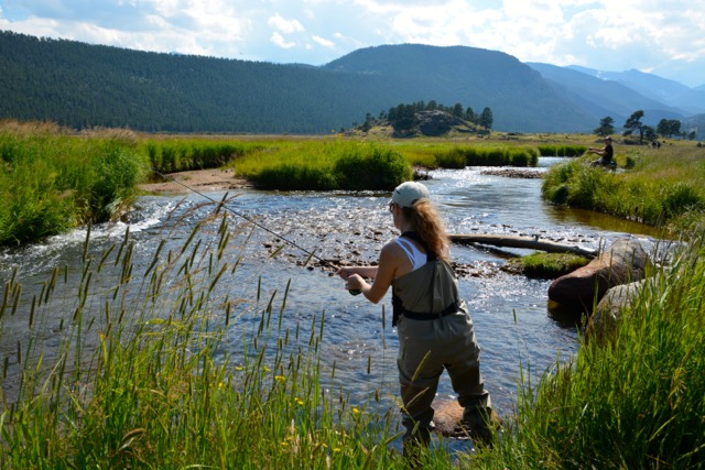 Fly fishing riffles in a river