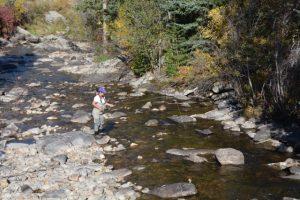 woman fly fishing in boulder creek