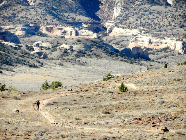Fruita and Moab Guided Mountain Biking Trips, Marys Loop with Colorado Wilderness Rides And Guides