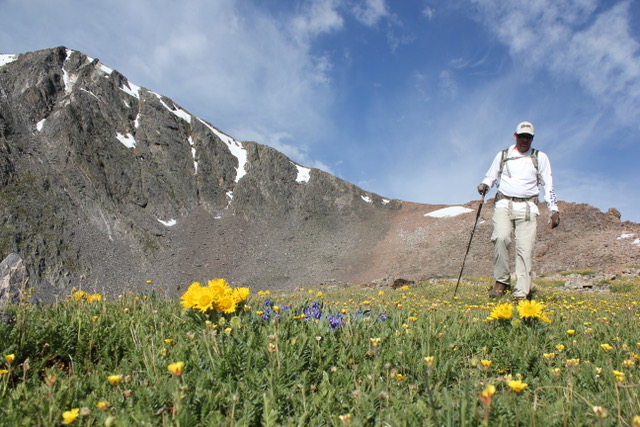 Mummy Traverse Wildflowers Rocky Mountain National Park Colorado Wilderness Rides And Guides