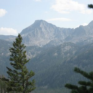 mountain peak with evergreens in the foreground