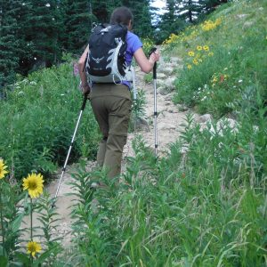 woman with pack and poles hiking up a steep rocky trail with wildflowers