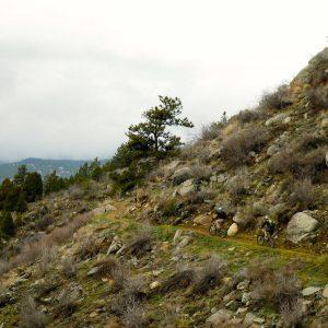 two men on a narrow mountain biking trail