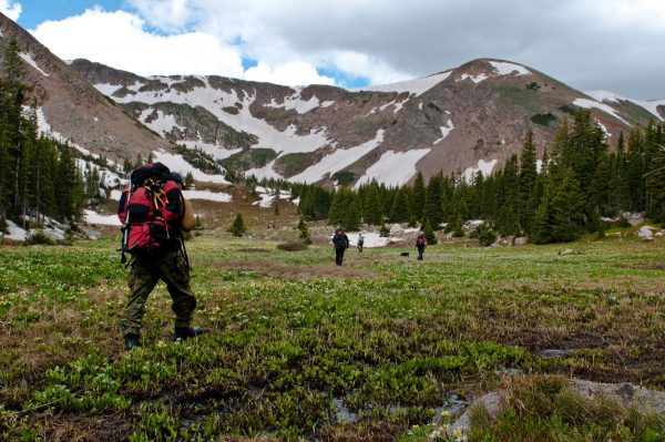 group of hikers making their way through a mountain meadow
