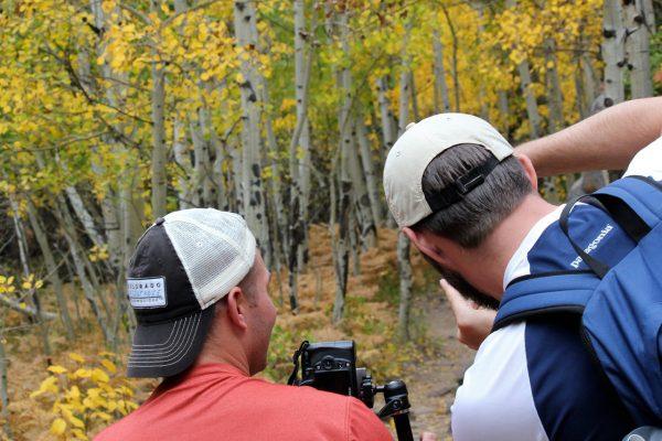two men practicing camera settings in an aspen tree grove
